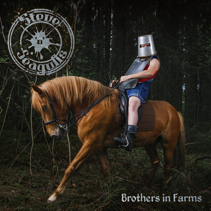 Steve_n_Seagulls-Brothers_in_Farms